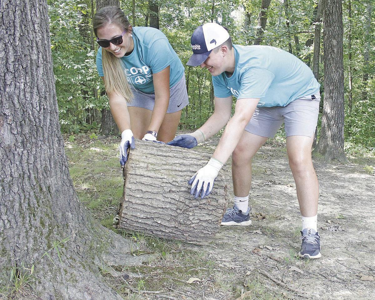 Y-Corps in Murray log roll