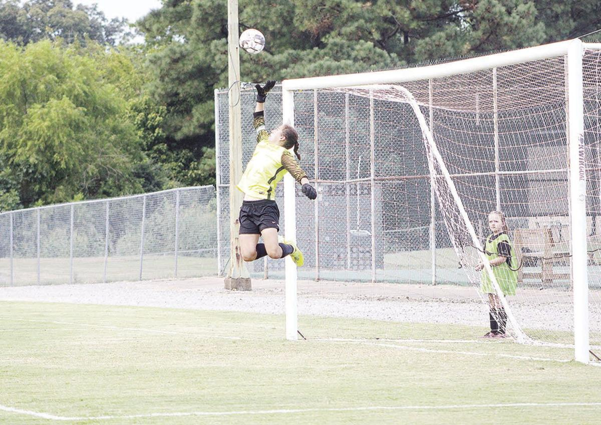 Gierhart leaps for the save attempt