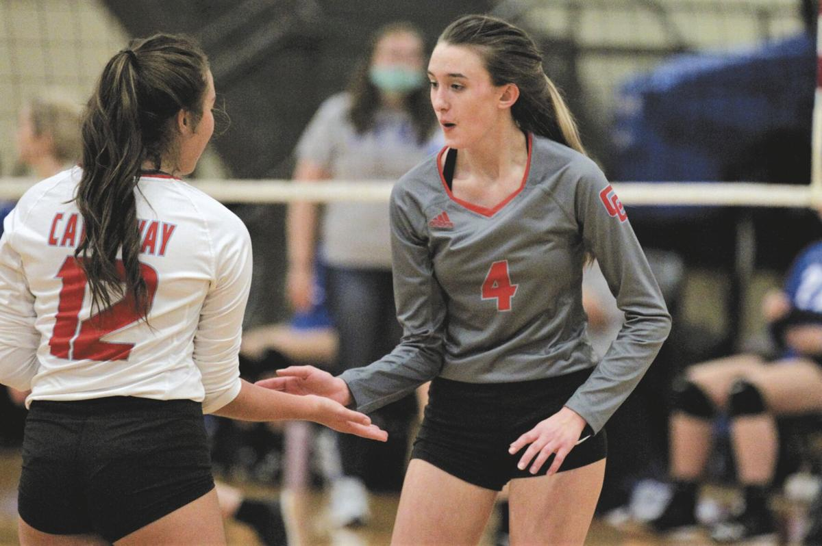 Lady Lakers fall in volleyball semis