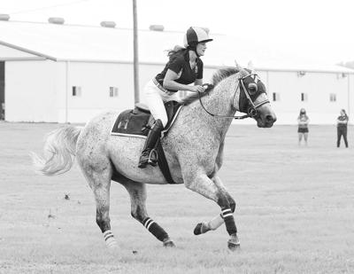 On the farm with Racer 1 and jockey Emily Helmick