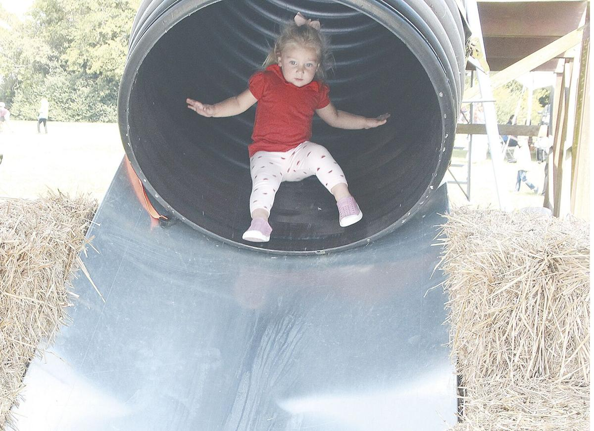 Families flock to Fall on the Farm as  it makes comeback