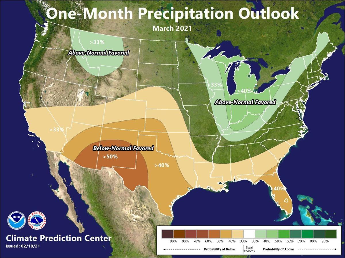 Predicted March precipitation