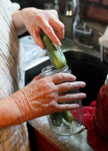cucumber canning
