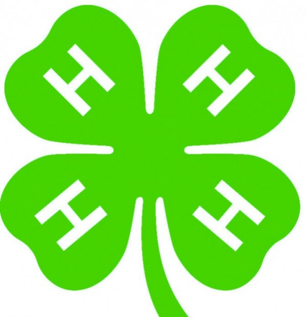 it was time for thanks at 4-h dinner | local | muscatinejournal
