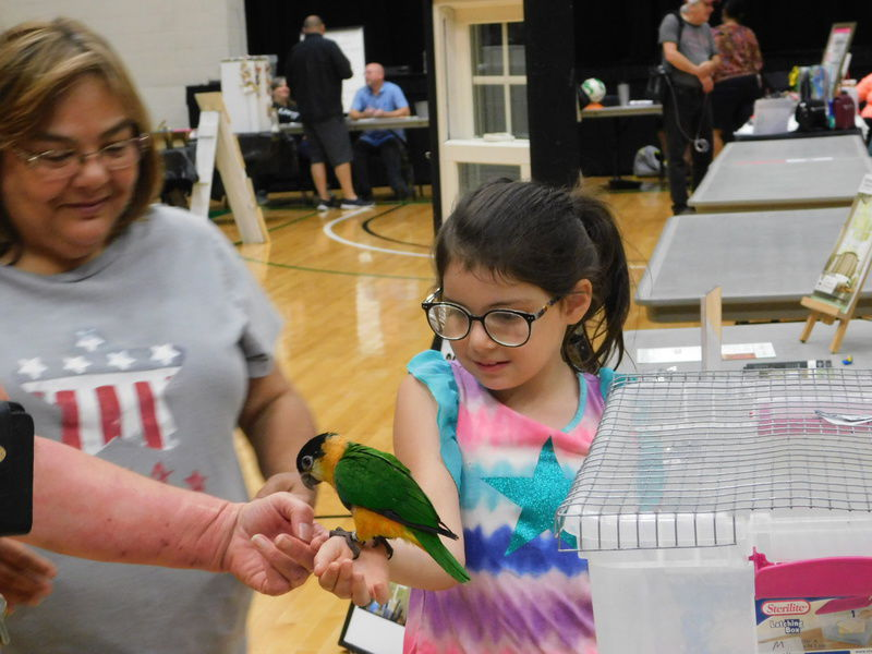 Residents gather downtown for Saturday fun