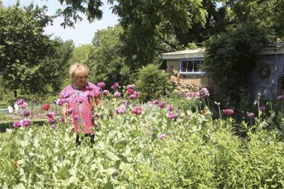 All the Dirt on Gardening: Garden Tour in Muskogee