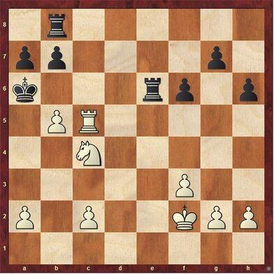 Chess Corner: Shelter