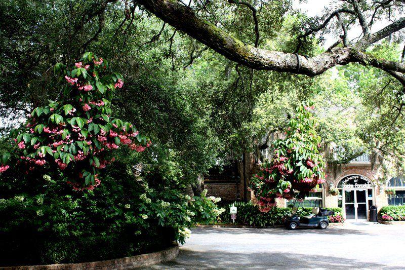 Design A Layered Garden