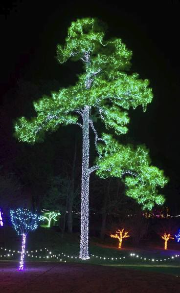 Gardening with Micki: Ewing helps park sparkle for the season