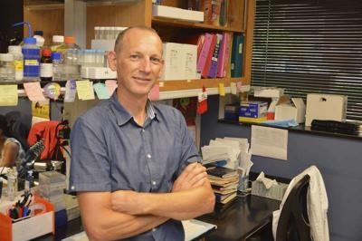 Research uncovers clues about age and muscle loss