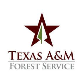 Texas A&M Forest Service logo