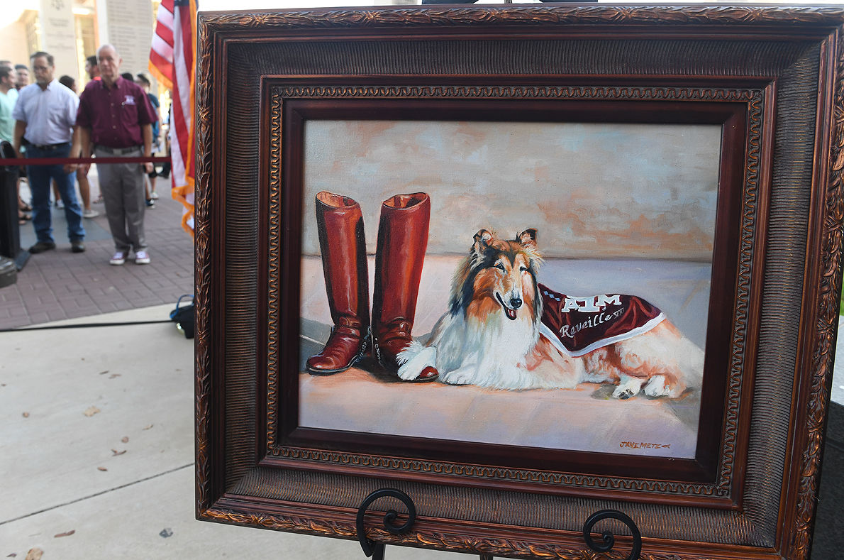Reveille VIII laid to rest outside Kyle Field