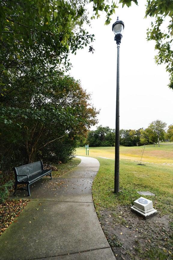 Brison Park Bonfire Memorial Lights