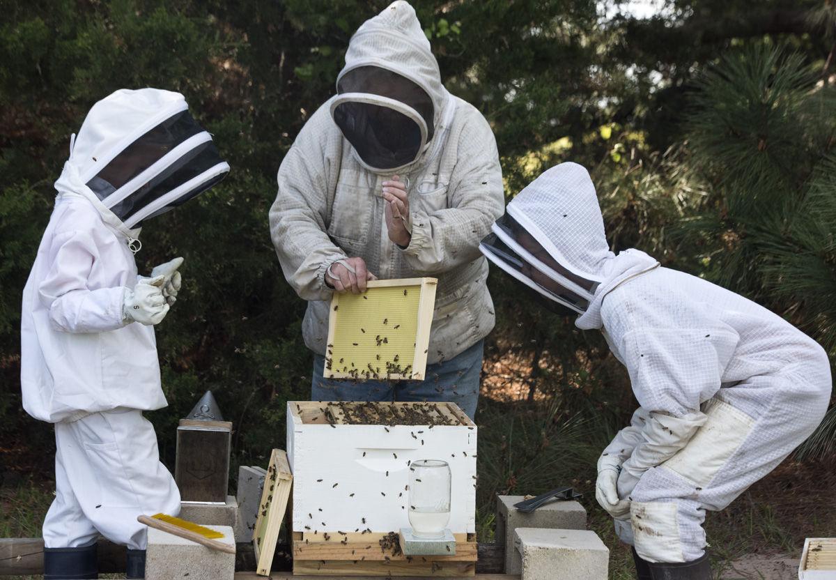 Beekeeper001 tfh.jpg