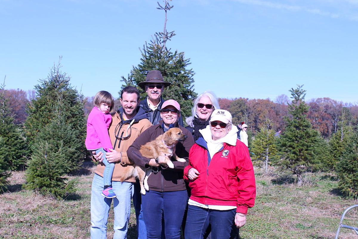 Christmas Trees A Real Tradition News
