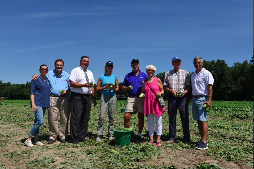 Maryland Food Bank celebrates 40 years with cucumber gleaning