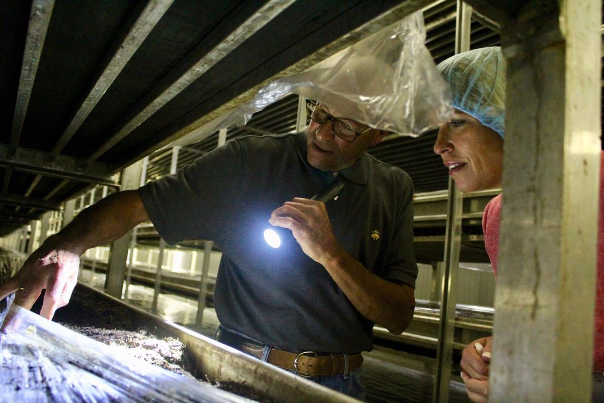 Maryland commerce secretary makes stop at Warwick Mushroom Farms