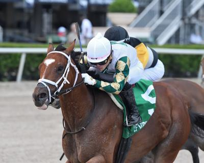 Bowman-bred comes up short at Pimlico in bid for 1st graded victory