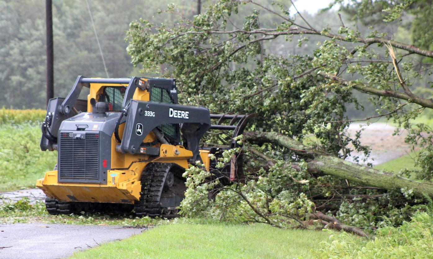 Skidsteer Clears Branches