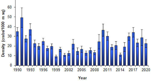 Crab Density in the Bay by Year