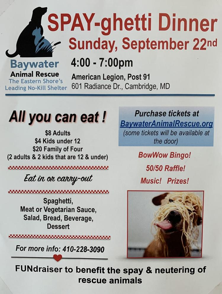 Please help us support rescue animals in Dorchester County!