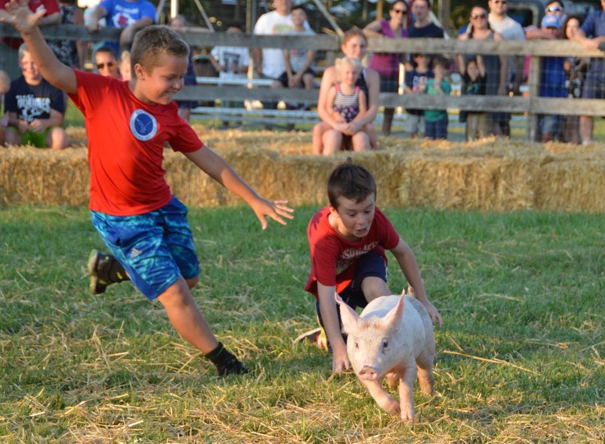 2019 Kent County Fair results are in