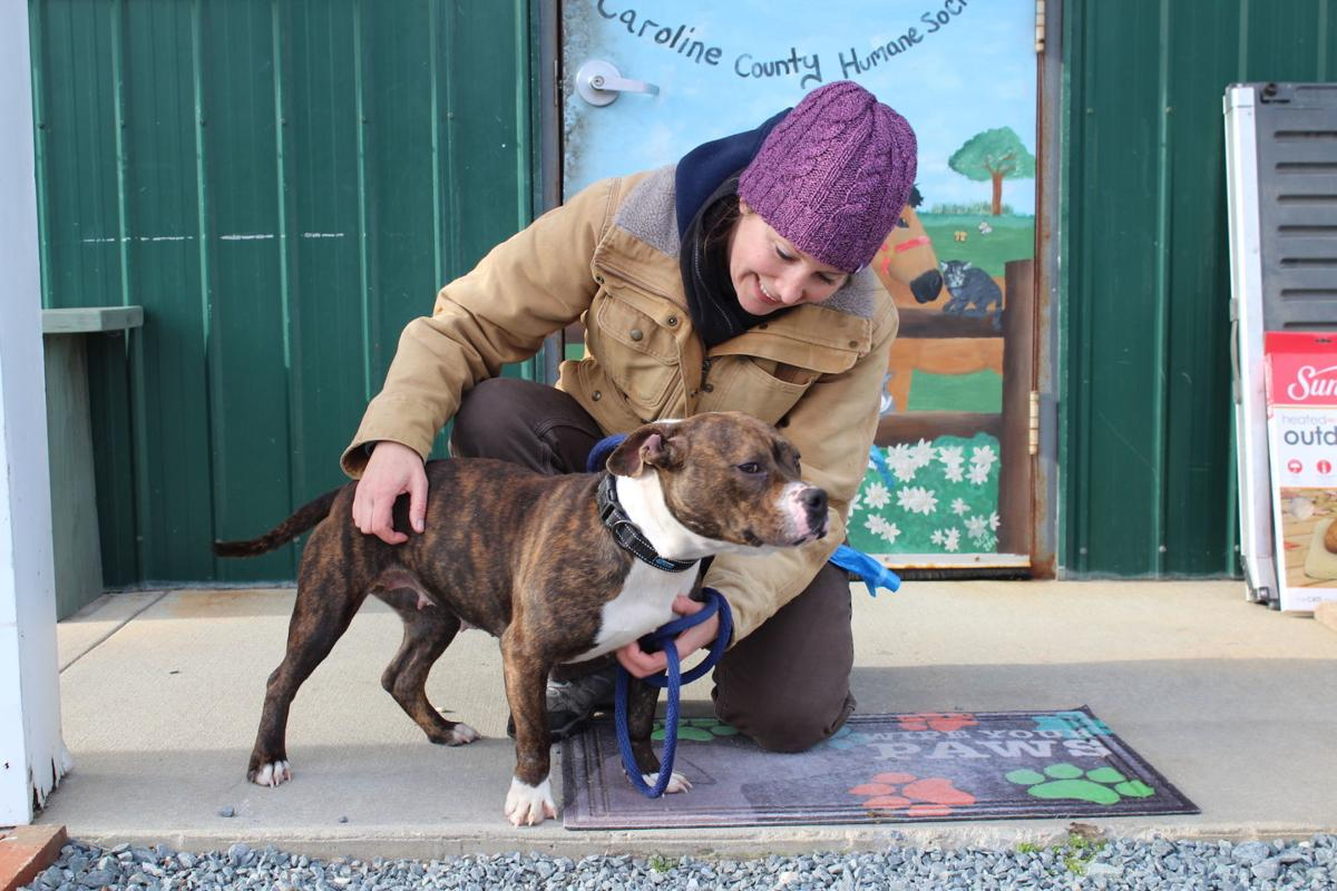 Volunteers are essential to Caroline County Humane Society