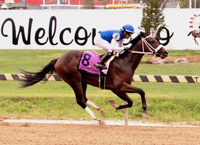 Bowman-bred wins inaugural running of Timonium Juvenile Stakes