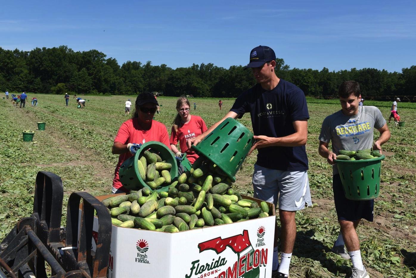 Maryland Food Bank celebrates 40 years