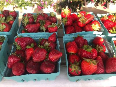 Local farms offer fresh produce and meats