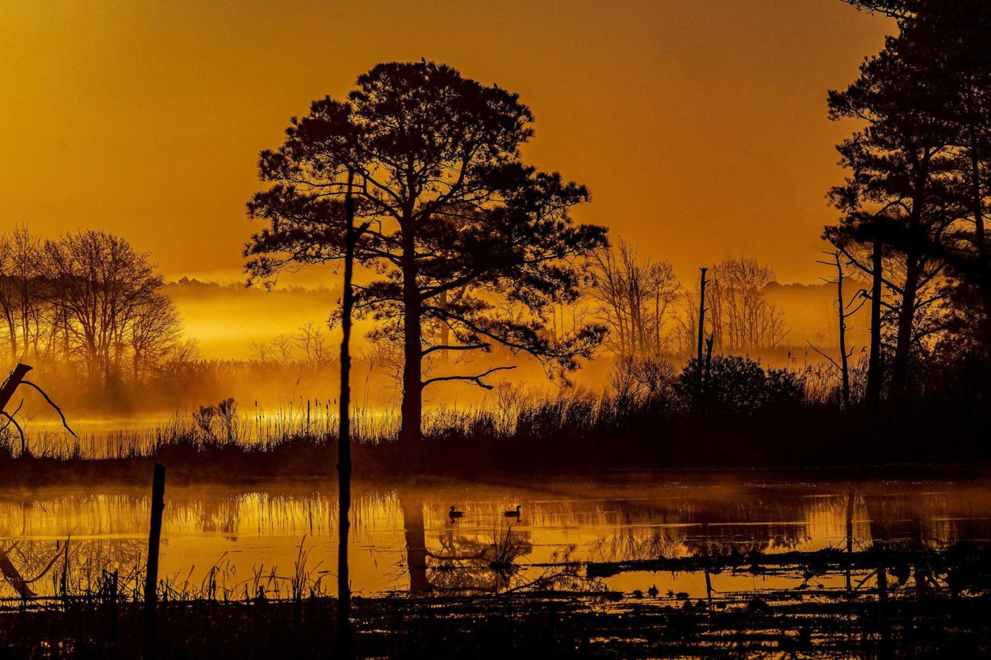 Blackwater photo takes first place in fall category