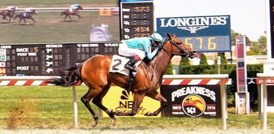 Bowman-bred posts dead-heat victory in 5 ½-furlong sprint