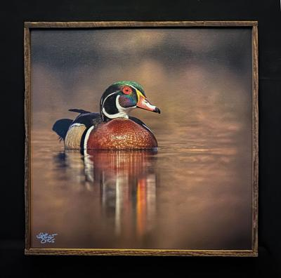 Waterfowl Festival looks to help artists with virtual gallery