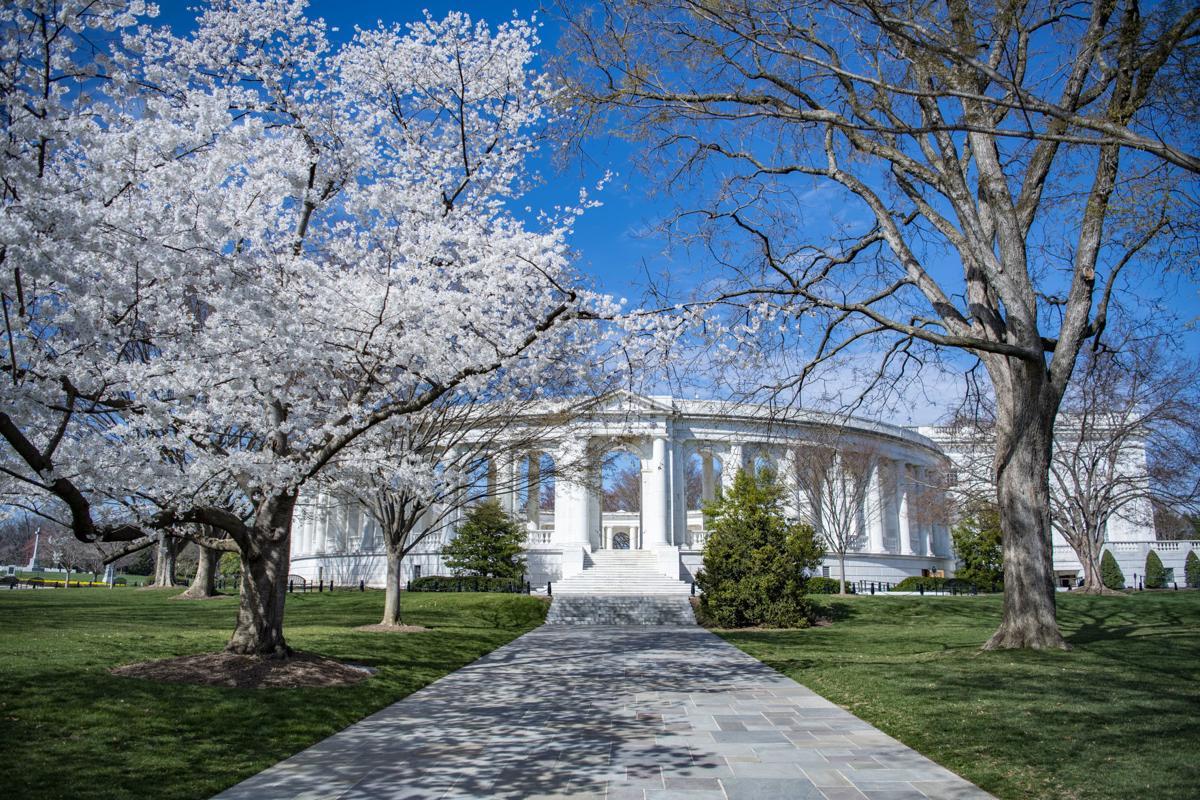Arlington National Cemetery's Memorial Amphitheater ...