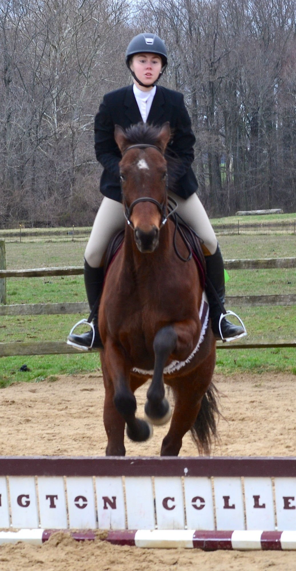 Wc English Equestrian Team Hosts Area Competition