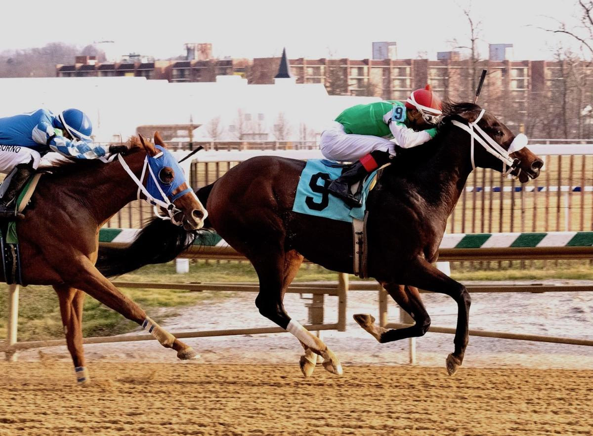 Bowman-bred gets 1st stakes victory at Laurel Park