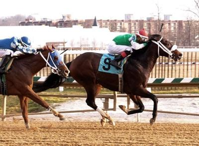 Bowman-bred pointed to Preakness Day stakes