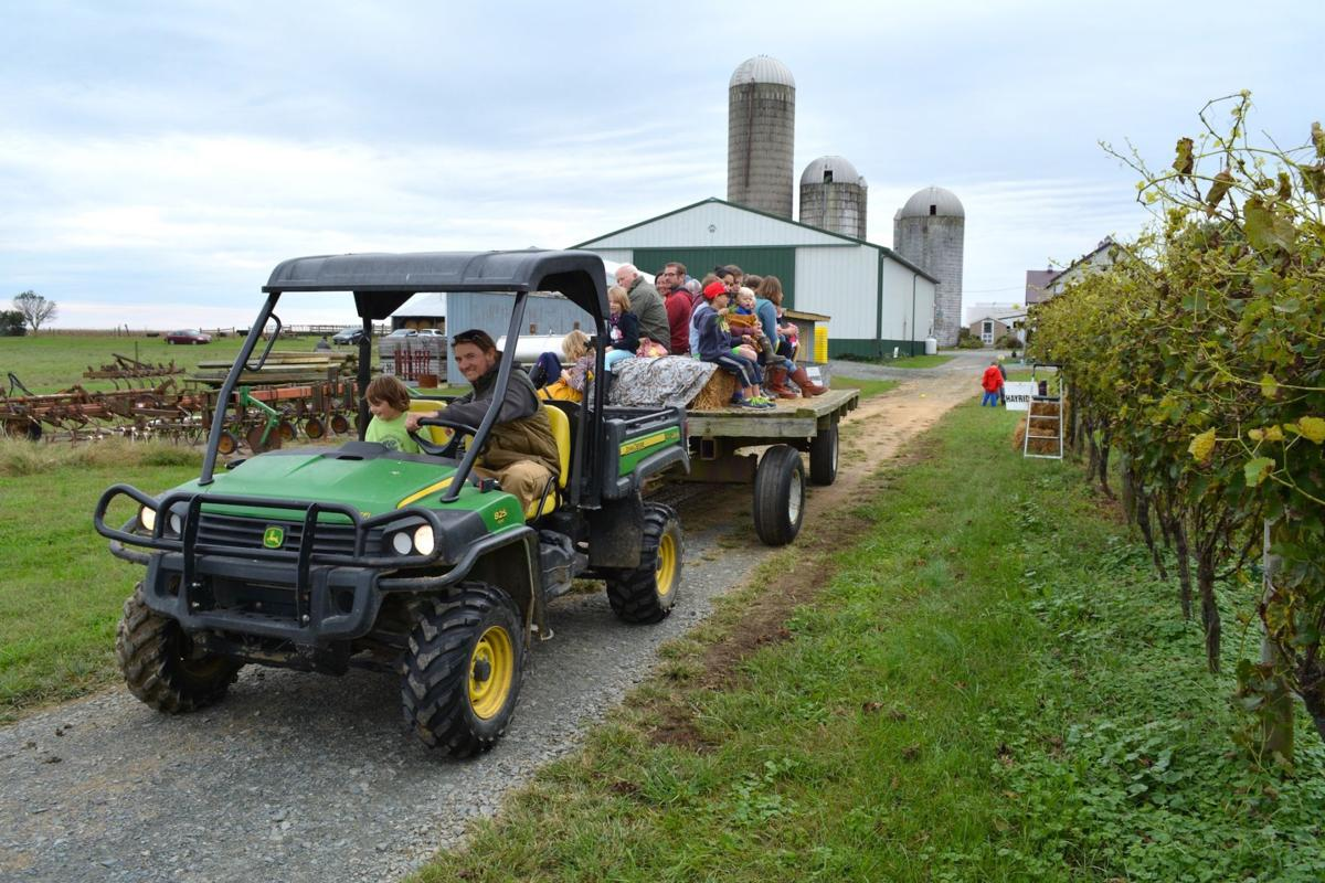 Family Fun Day to feature hayrides, games and fun for everyone