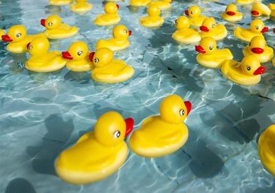 Duck Race Festival