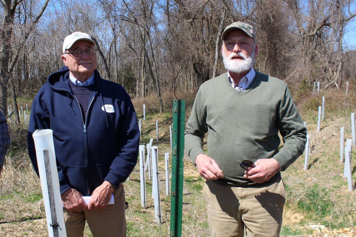ShoreRivers gives tour of restoration projects in Kent County