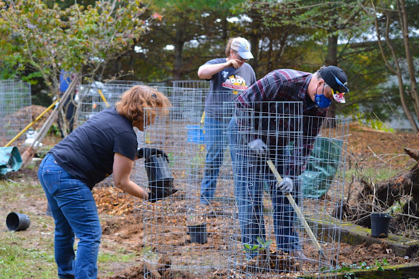 Shrewsbury community garden continues to grow