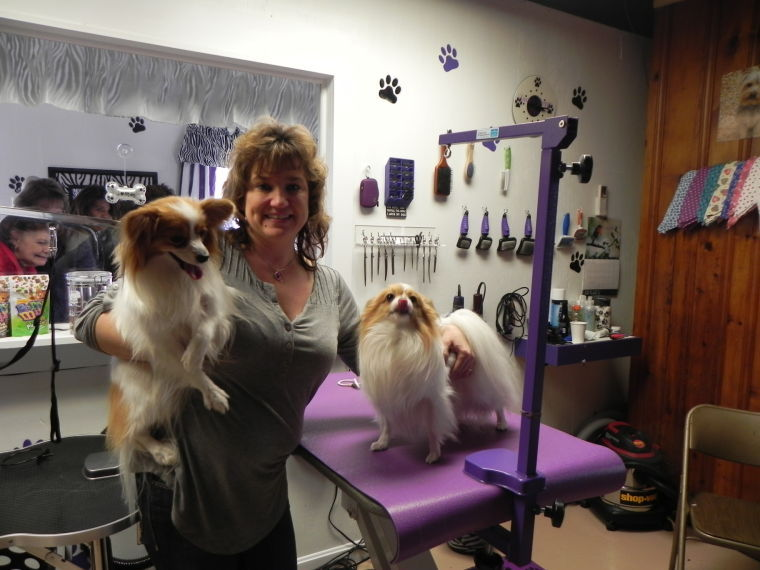 Tails Wag For Opening Of Cambridge Pet Grooming Business Dorchester County Myeasternsmd