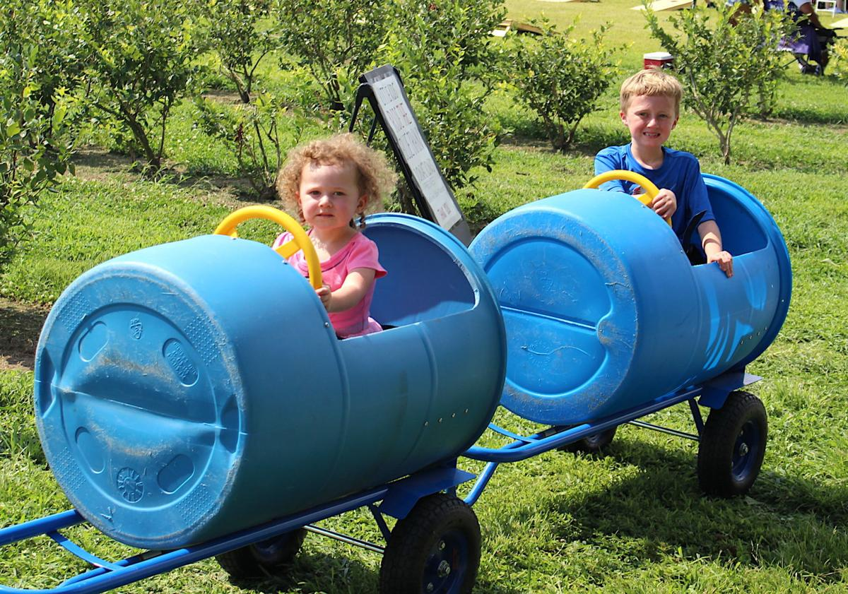 Sudlersville Peach Fest '19