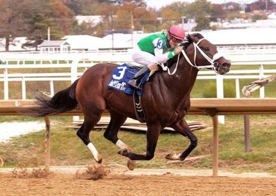 Bowman-bred wins $150,000 Maryland Million Classic in record time