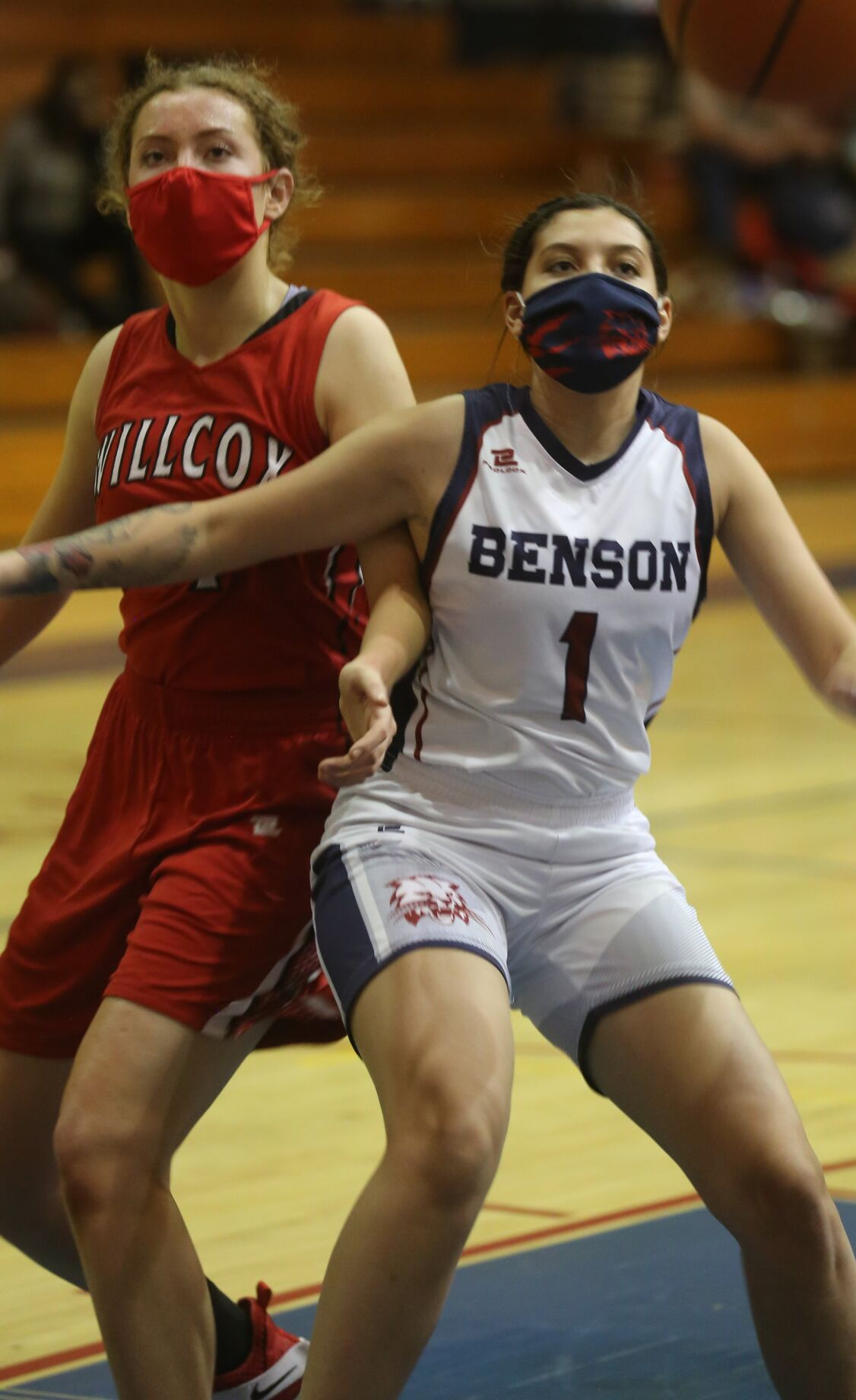 Benson v Willcox 2