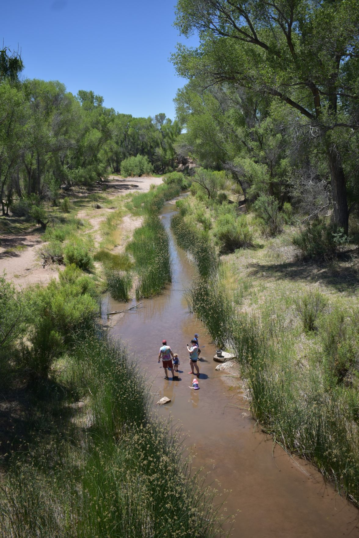 Wet/dry mapping volunteers report more water in river
