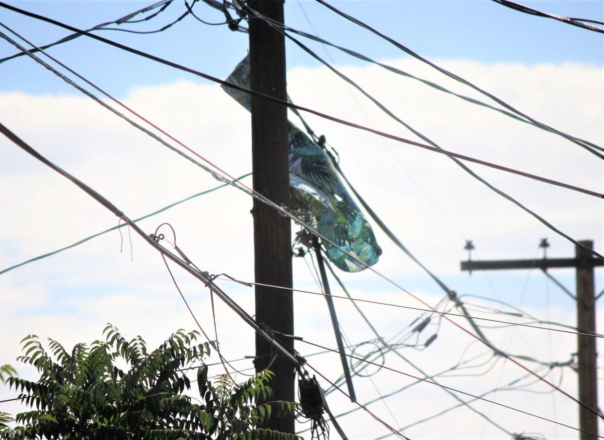 Umbrella triggers power outage in Douglas