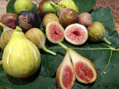 Sierra Vista Farmers Market figs