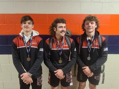 Willcox wrestling state placers