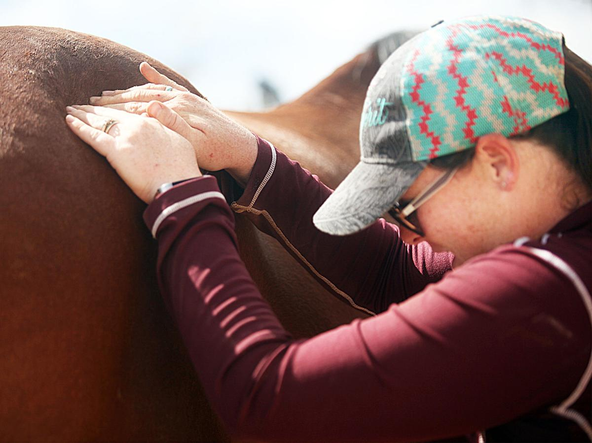 Relieving The Tension Equine Massage Therapy Delivers The -2973